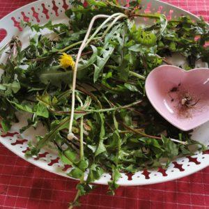 Potage feuilles de pissenlits 🌻